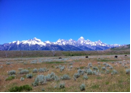tetons A Return to the Grand Tetons: Perspective on the Economic Obstacles Ahead
